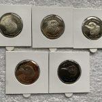 2018 Circulated 5 Coin Falkland Islands Penguin Set Image